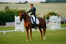 Ausbildung Links Auf Pferd